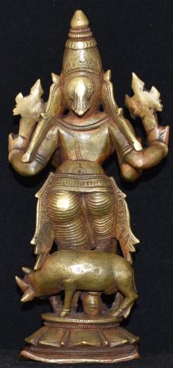Venugopala GJ Back