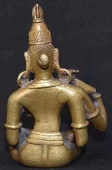 Vishnu Krishna back