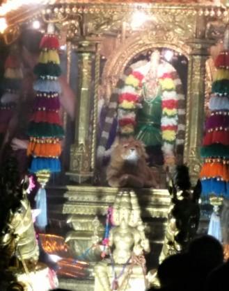 Kamakshi temple utsav closeup