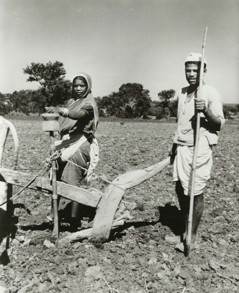 This image has an empty alt attribute; its file name is seeder-photo-gene-graham-1966.jpg